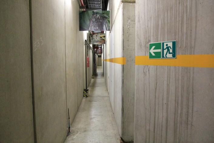 For å komme inn må vi igjennom en smal gang mellom veggen og en haug av betongblokker som er bygd rundt partikkelbanen. (Foto: Ingrid Spilde)