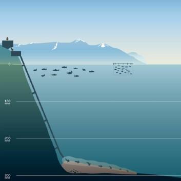 Deponering av gruveavgang på dypt vann i en norsk fjord. (Foto: (Illustrasjon: Nordic Mining))