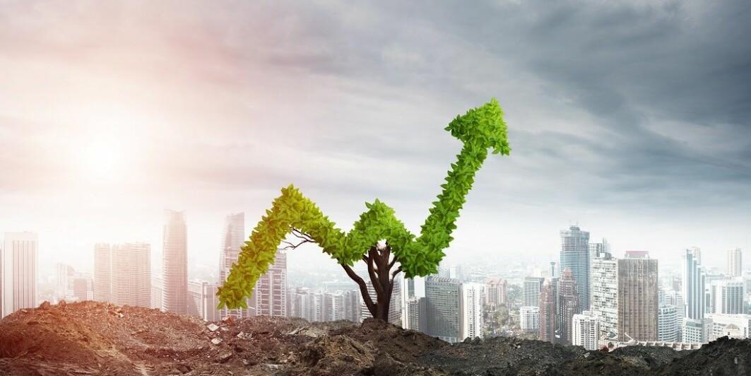 I de fleste studiene finner forskerne at bærekraftig nytenkning har en positiv effekt på konkurransekraften til bedrifter.