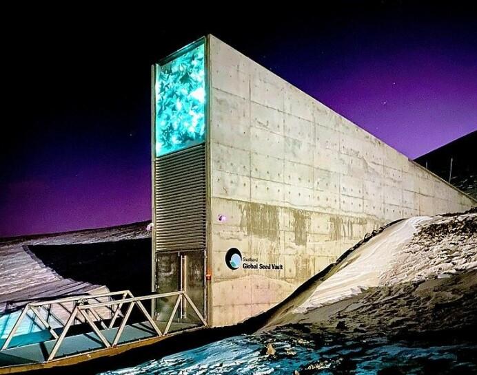 Noreg har ansvar for verdas største sikkerheitslager for frø; Svalbard Globale Frøhvelv. Frø frå meir enn 4000 ulike nyttevekster blir lagra her, som ei forsikring for framtidig matproduksjon. Kor lenge dei ulike artane beheld spireevna, har vist seg å variere mykje, så heilt vasstett er ikkje denne løysinga. Foto: Subiet, CC BY-SA 4 via Wikimedia Commons