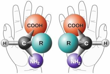 Dette er to kirale molekyler. De er altså helt like, men speilvendte, på samme måte som hendene i bakgrunnen. Livet på jorda består i hovedsak av venstreorienterte molekyler - andre steder i universet kan det være annerledes. (Foto: (Illustrasjon: NASA))