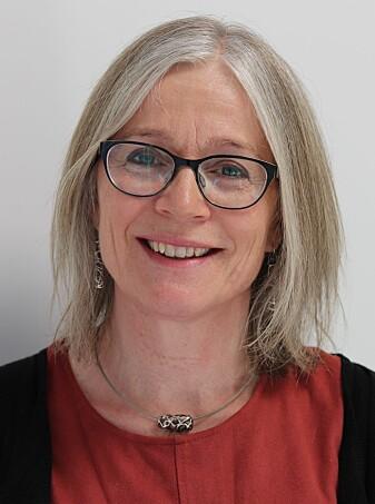 Professor Elisabet Rudjord Hillesund på Institutt for folkehelse og ernæring på Universitetet i Agder (UiA).