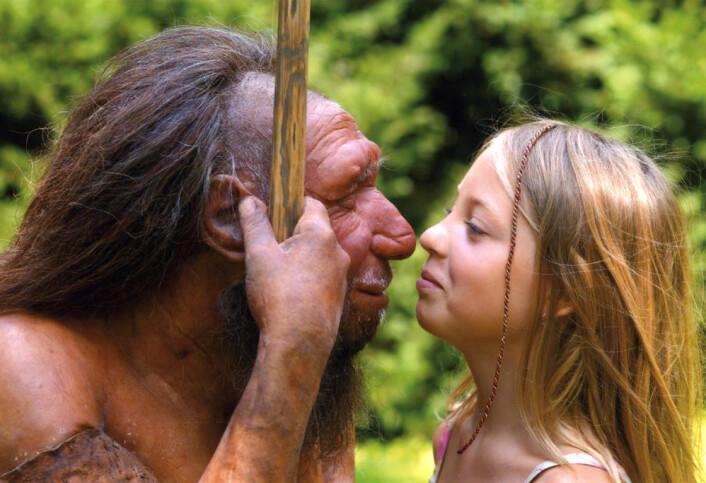 De siste neanderthalere døde ut i det sørlige Spania tidligere enn antatt. Forskere fra flere europeiske universiteter, blant annet i Spania, har datert funn med en ny og mer presis metode. De nye resultatene sår tvil om mennesker og neanderthalere levde sammen i Spania for rundt 30 000 år siden. (Foto: Neanderthal Museum, Mettmann, Tyskland)