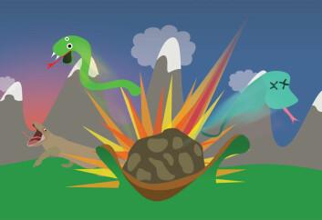 Ikke bare dinosaurene, men også mesteparten av verdens øgler og slanger møtte sin ende da himmellegemet Chicxulub traff jorda. (Foto: (Illustrasjon: Per Byhring))