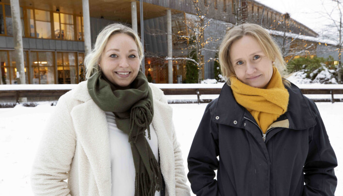 Ellen Lexerød Hovlid og Ingvild Sande Lillebø har sett nærmere på deling av barnebilder i sosiale medier.
