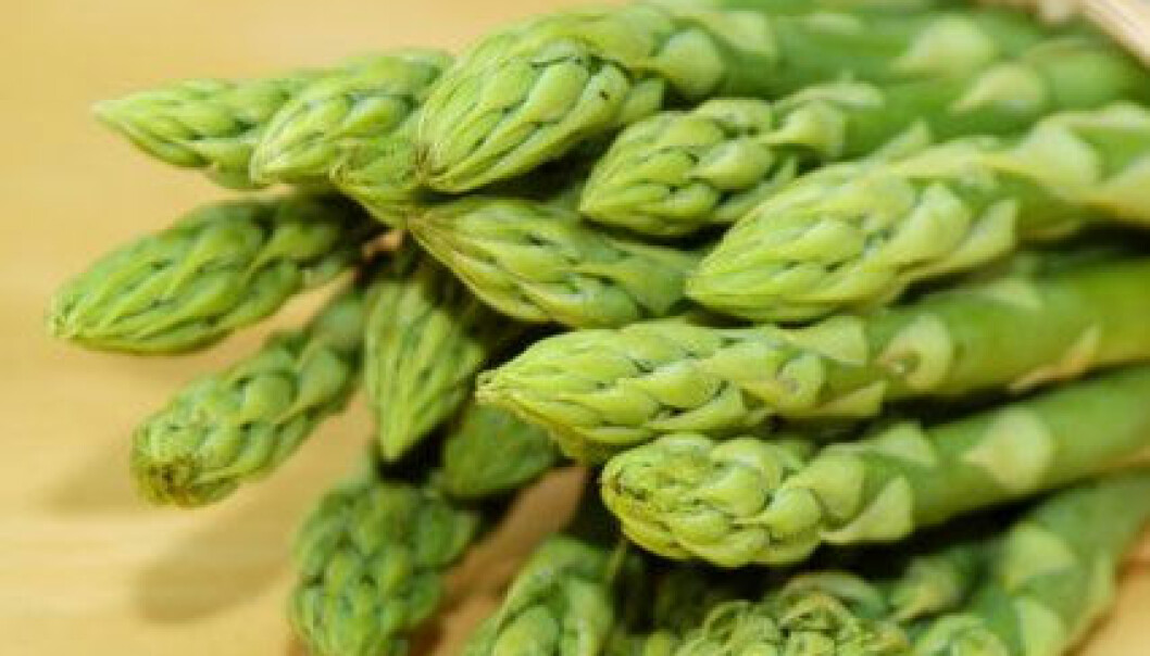 Fant vill asparges på Østlandet
