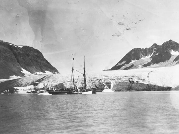 Øst-Grønland var lenge vanskelig tilgjengelig for vitenskapen. Bilder fra dansk ekspedisjon på 1930-tallet. (Foto: Arktisk Institutt i København)