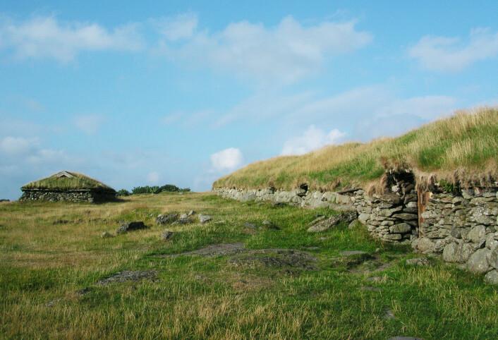 Langhus fra en rekonstruert jernaldergård ved Ullandhaug i Stavanger. (Foto: Gunleiv Hadland/Wikimedia Commons)