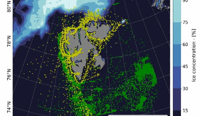 Average sea ice concentration, and fishing (green) and passenger (yellow) vessel position in July of 2013. Figures generated with python 3.7.x.