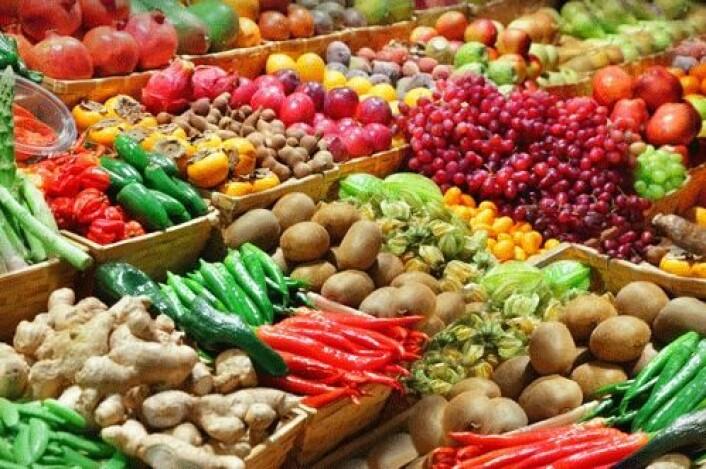 Forsøkene viser at et kosthold som er rikt på antioksidanter også påvirker genene positivt. (Foto: Shutterstock)