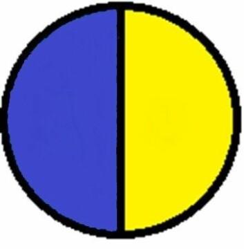 Fig. 1: Janus-kapsel (oppkalt etter den romerske guden Janus med to ansikter). Den blå delen har én type stoff i overflaten, den gule har et annet stoff. (Foto: (Illustrasjon: Wikipedia))