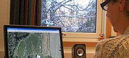 Stordata og kunstig intelligens viser ressursene i Norge