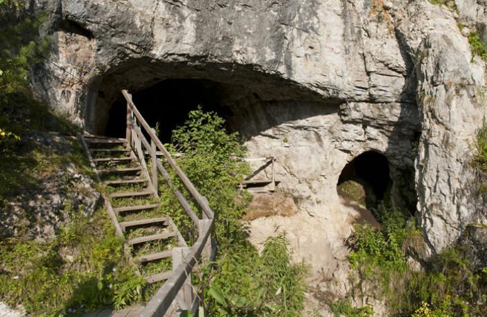 Denisova-hulen i de russiske Altaj-fjellene. Her er levninger etter den mer enn 50 000 år gamel urjenta funnet. (Foto: Max Planck Institute for Evolutionary Anthropology)