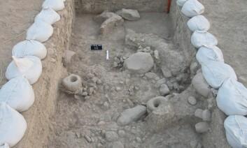 I Iran, på et arkeologisk funnsted kalt Chogha Golan, er det funnet rester etter sanking og bruk av både ville og dyrkede kornsorter. Det antyder at jordbruket kan ha oppstått samtidig på flere steder i den fruktbare halvmåne i Midtøsten. (Foto: TISARP/University of Tübingen)