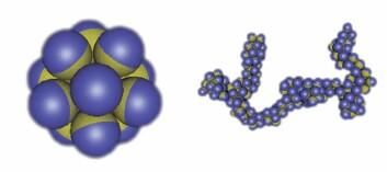 Fig. 2: Om delene i kapslene tiltrekker hverandre, kan de organisere seg i flere ulike strukturer. (Foto: (Illustrasjon: Physics Today, Angelo Cacciuto, Erik Luijten))