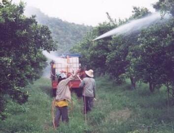 """Sprøyting av fruktplantasje i et malariautsatt område i Nord-Thailand. Foto: Simon R. Sandve."""