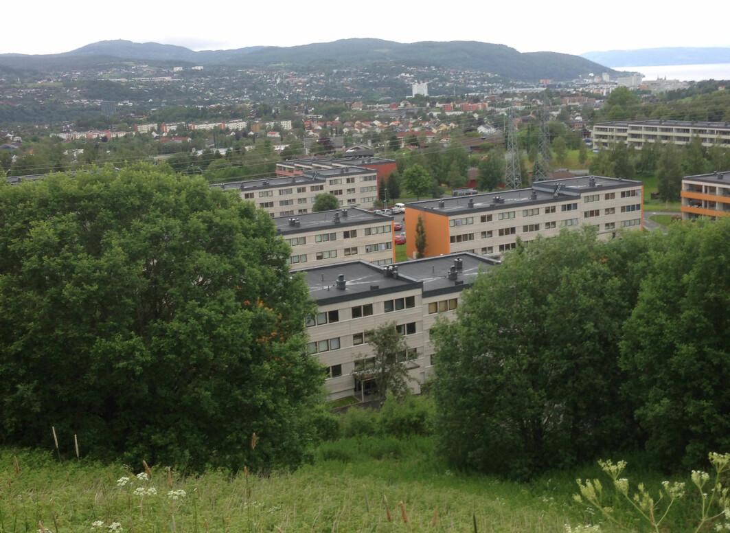Vestlia borettslag i Trondheim er et boligområde bygd på 1970-tallet, hvor forskerne har undersøkt forskjellige scenarioer for rehabilitering.