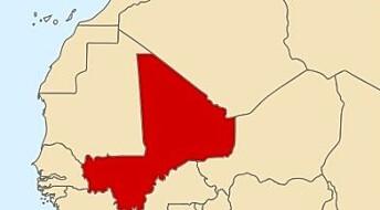 – Norsk deltakelse i Mali blir som å slå på et vepsebol