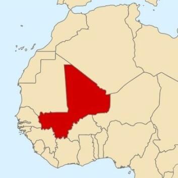 Mali er en tidligere fransk koloni som ble uavhengig i 1960. Landet var før løsrivelsen kjent som Den Sudanske Republikk og Fransk Sudan. Fra 1960–1991 var landet et diktatur. Det første frie valg fant sted i 1992. 21. mars 2012 skjedde et militærkupp i landet. Mali har en befolkning på 14,5 millioner. (Kilde: Wikipedia) (Foto: Wikimedia Commons)