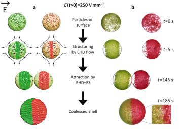 Fig. 3: Fremstilling av mosaikkolloidosomer. (Foto: (Illustrasjon: Nature Communications))