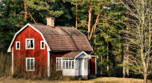 Hvorfor lengter unge etter et lite hus i skogen?