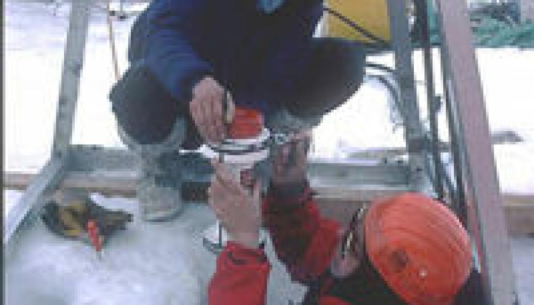 """Keith Nicholls (t.v.) fra Marine Research Institute i England og Svein Østerhus (t.h.) monterer norskproduserte måleinstrumenter på en signalkabel. Instrumentene blir senket gjennom 1000 meter tjukk is til havvatnet under isbremmen. Instrumentene måler havstrømmen, temperatur og saltforhold under den flytende isbremmen. Målingene blir sendt gjennom signalkabelen til overflata og videre via satellitt til forskerne i England og Norge. Foto: Privat."""