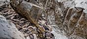 Massegraver for mink kan allerede ha forurenset grunnvannet