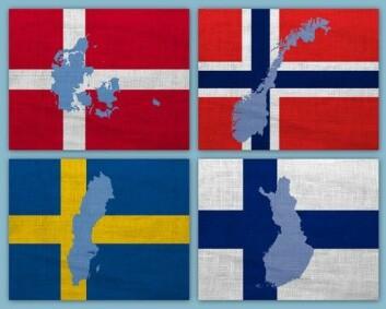 Økt kunnskap om kulturforskjeller mellom de nordiske landene reduserer sjansen for å mislykkes. (Foto: (Illustrasjon: www.colourbox.no))