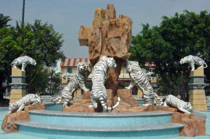 Hvite tigre er populære og egger fantasien til mennesker over hele verden. Bildet viser inngangspartiet til fornøyelsesparken Chimelong Paradise i Guangzhou. (Foto: Wikipedia Commons)