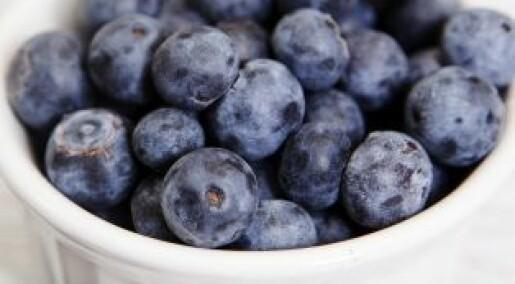 Friskere med naturlige antioksidanter