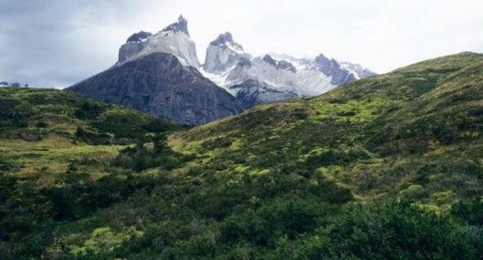 Patagonia i Argentina kan ligne på Norge. (Foto: Colourbox)