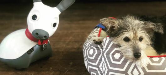 Kan roboter erstatte hunder?