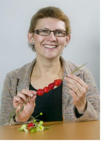 """Kjersti Aaby tar doktorgraden på jordbær. Foto: Kjell J. Merok."""
