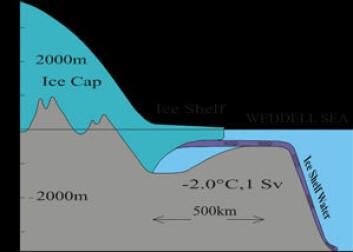 """""""Temperaturen inne i isbremmen er - 25 grader eller kaldere og havvatnet som kommer i kontakt med isen blir derfor kjølt ned til frysepunktet. På grunn av trykket er denne temperaturen lavere enn frysepunktemperaturen på overflaten (-1.9 grader). Der hvor isen er 1000 meter tjukk er det målt -2.6 grader i havvatnet uten at vannet fryser til is. Kilde: Svein Østerhus."""""""