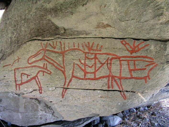 Helleristning fra Moelv fra eldre steinalder, det vil si 2-3000 år før vår tidsregning. (Foto: Wikimedia)