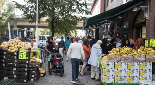 Økt tillit til innvandrere