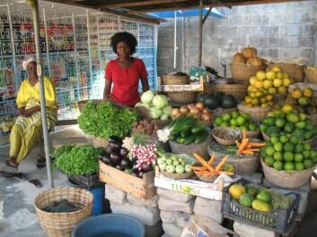 Grønnsakmarkedet i Cocotier i Cotonou. (Foto: May-Guri Sæthre)