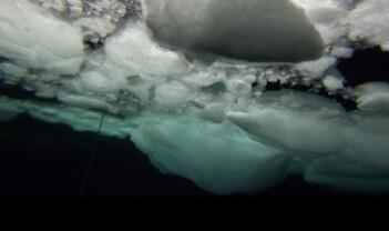 Lyden av sjøis – før det er for sent