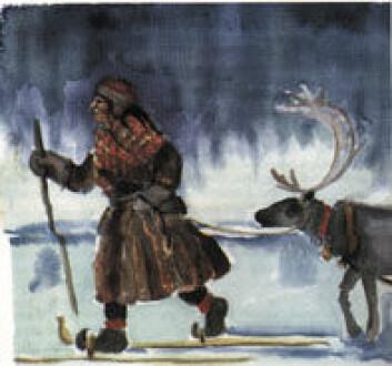 """""""I 1988 ble Nordisk Samisk Kvinneorganisasjon stiftet, her representert gjennom en illustrasjon av Sanne Sihm. Sko, klesdrakt og ski er de samme som på det 100 år eldre bildet «Setesdalsjente på ski» 1889 av Carl Hansen (bildet under). I de to bildene uttrykkes det norske og det samiske med samme symboler."""""""