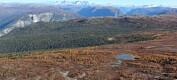 Vannet i norske innsjøer er blitt brunere, men allikevel bedre