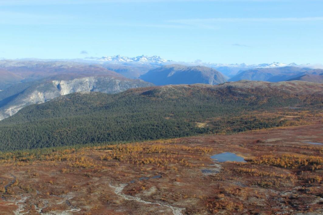 Målet med undersøkelsen var å få et øyeblikksbilde av kjemisk vannkvalitet i Norge og hvordan den har endret seg siden forrige gang i 1995.