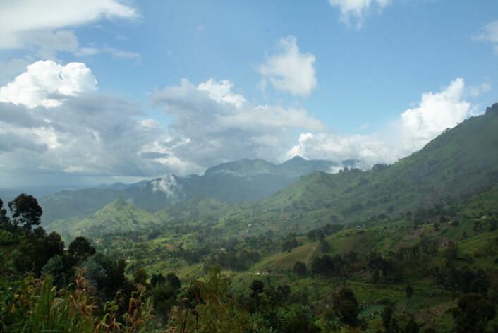 Avskoging er et problem mange steder i Tanzania. Mesteparten av skogen er tørr skog, ikke regnskog. Bilder viser de regnrike Uluguru-fjellene nær byen Morogoro der det også finnes regnskog. (Foto: Asle Rønning)