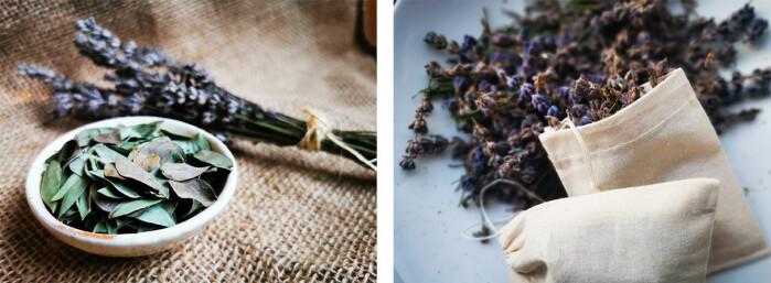 Lavendel og eucalyptus er sterke og rene lukter som passer fint på badet eller i små poser i ullskuffen.