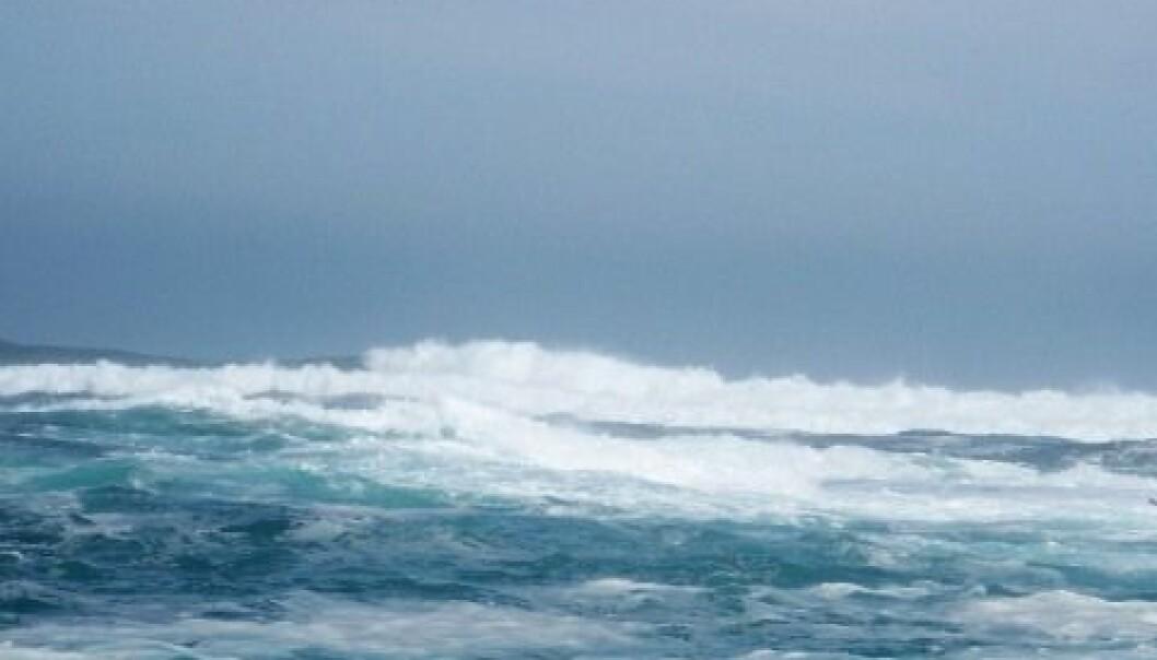 Kald vind gjør Norskehavet varmt