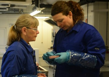 Marte Schei (t.v.) og Kirsti Greiff undersøker natriuminnholdet i kokt skinke laget av Espeland på Jæren. (Foto: Sintef)
