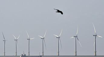 Snart skal det bygges vindparker på Doggerland - den tapte delen av Europa. Hva betyr det for sporene etter folk som ligger under Nordsjøen?