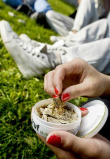 Snus benyttes i stor grad av norske røykere som forsøker å redusere eller avslutte sigarettforbruket. Foto: SIRUS/Nye bilder