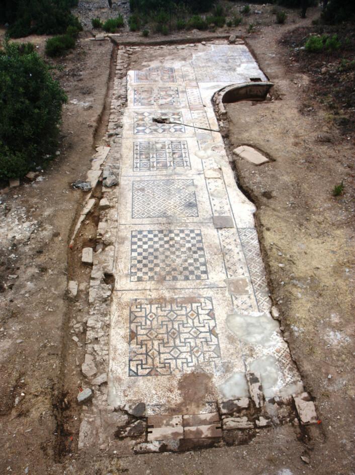 Den utgravde delen av mosaikken utgjør antageligvis rundt 40 prosent av hele gulvet. (Foto: Michael Hoff, University of Nebraska-Lincoln)
