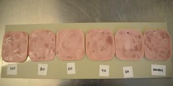 Skinkebiter med ulikt natriuminnhold: Salt gir bedre smak, holder på vann og konserverer mat. Dagens skinke helt til høyre. (Foto: Sintef)