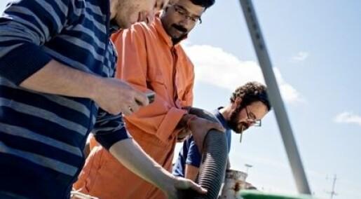 Nett-TV: Forsker på havets ukjente liv